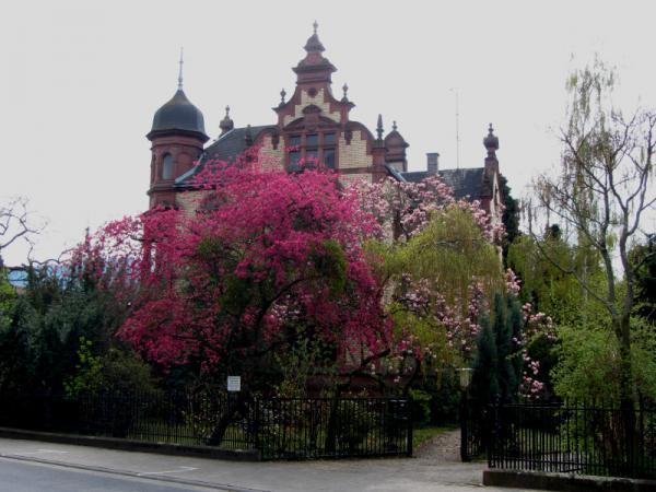 Schöne Villa in Kleinheubach Frühling